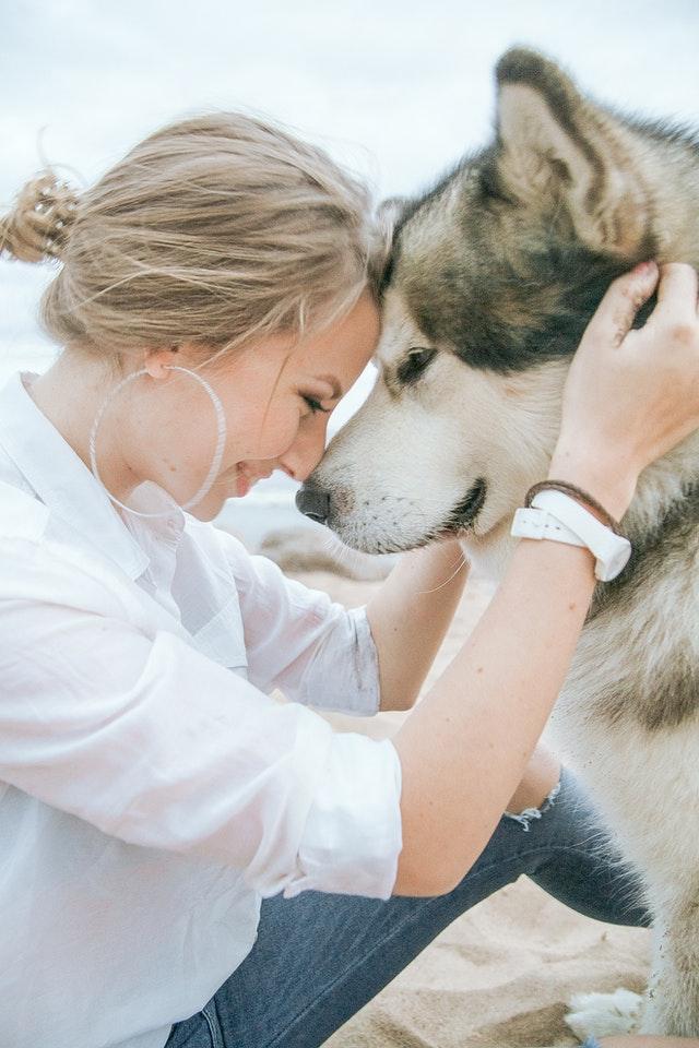 Dog ownership for longer life