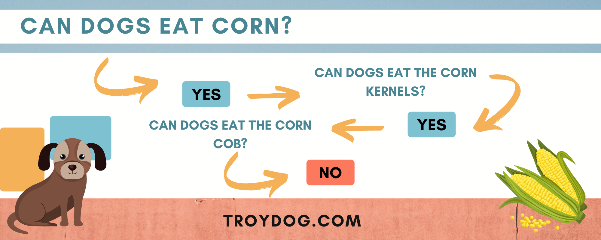 Can dogs eat corn and what part of the corn the dog can eat chart